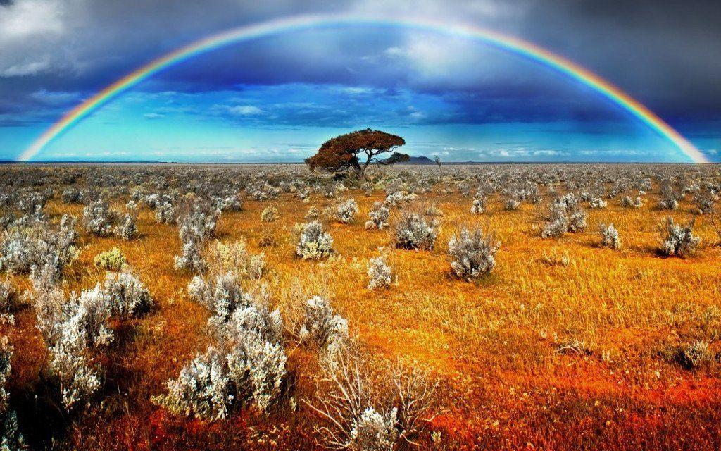 Австралия Фото -6