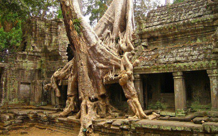Камбоджа Фото -1