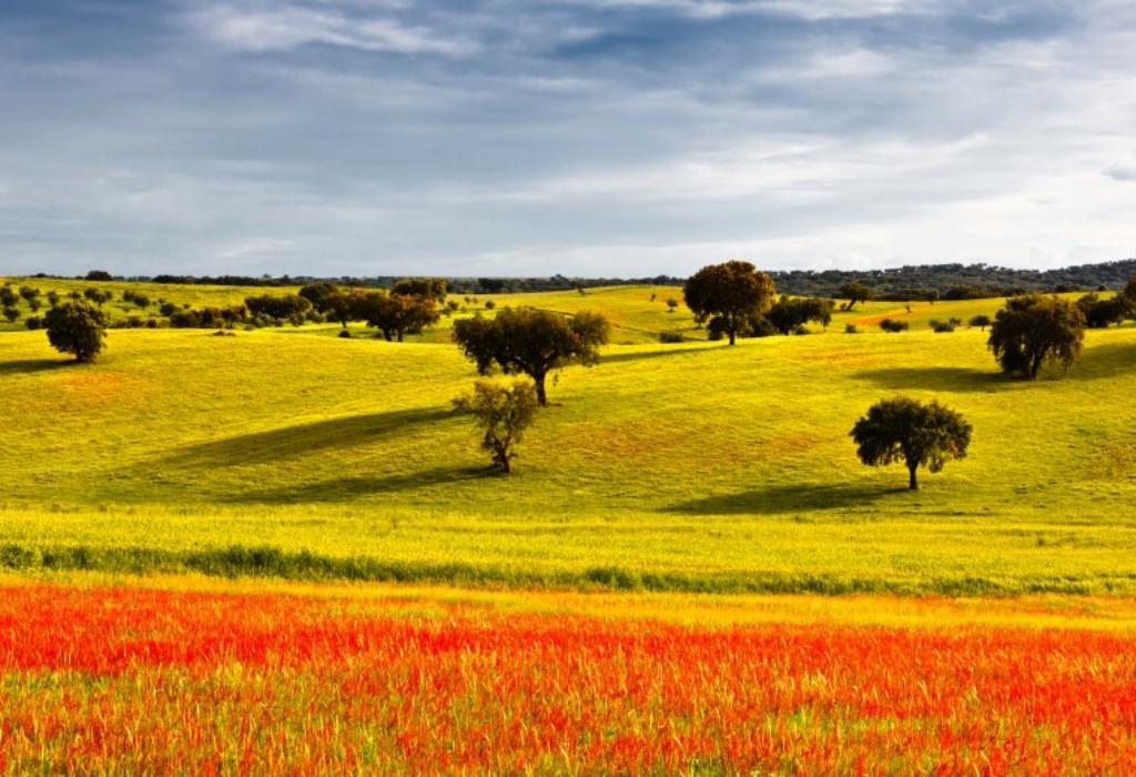 Португалия Фото -2