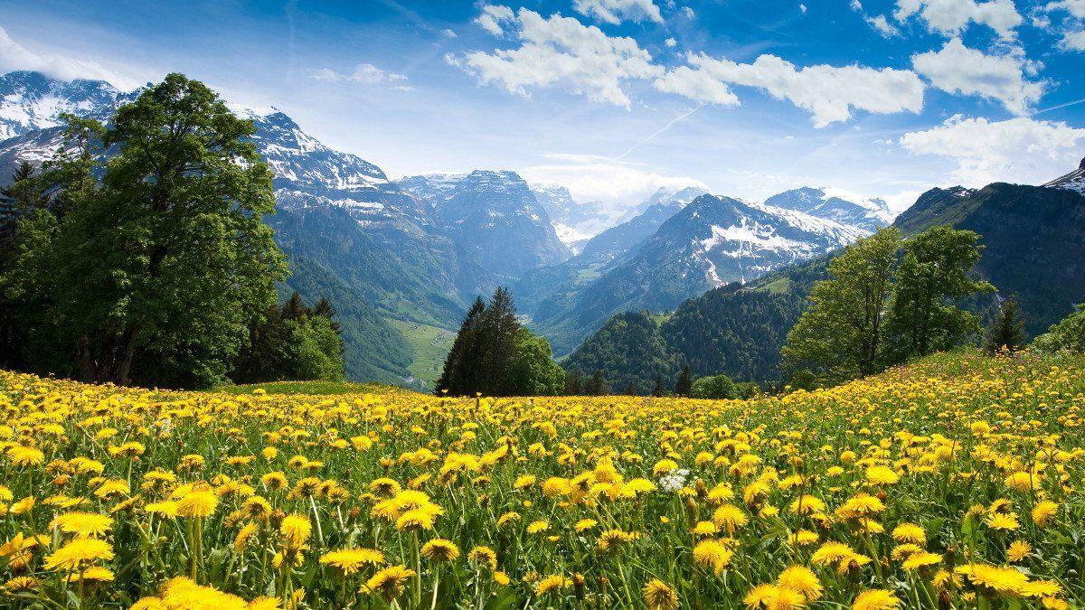 Швейцария Фото -5