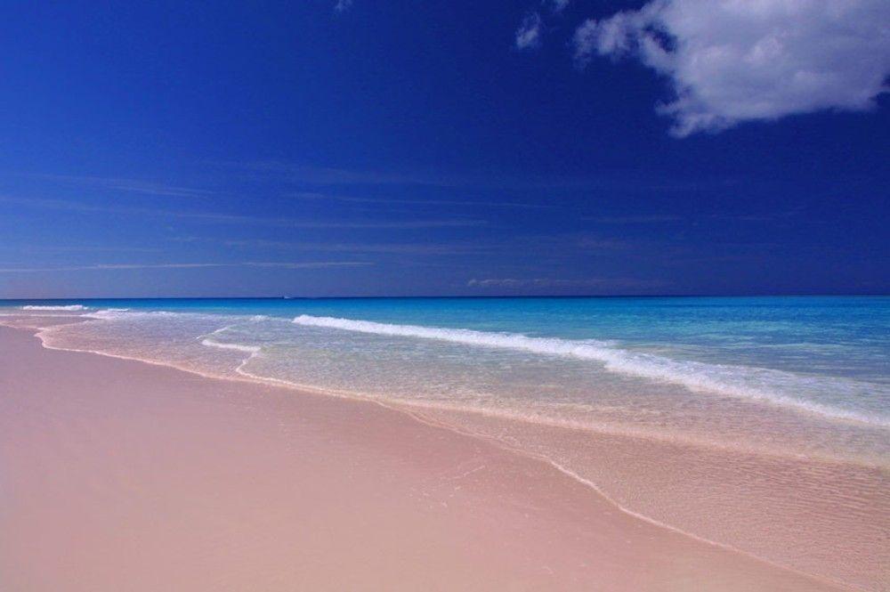 Багамы. Фото 8