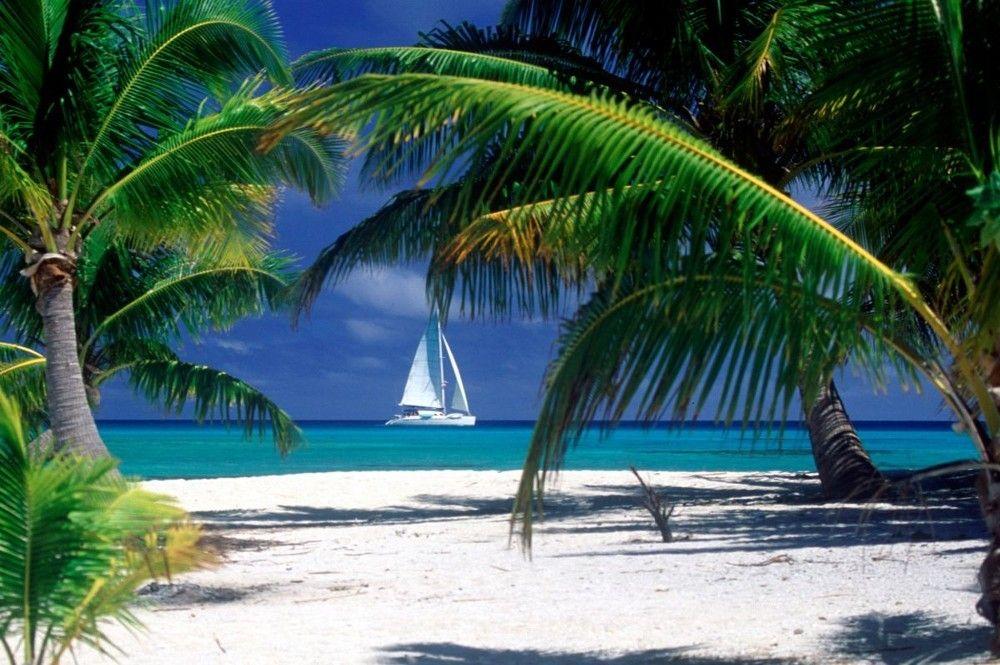 Багамы. Фото 5