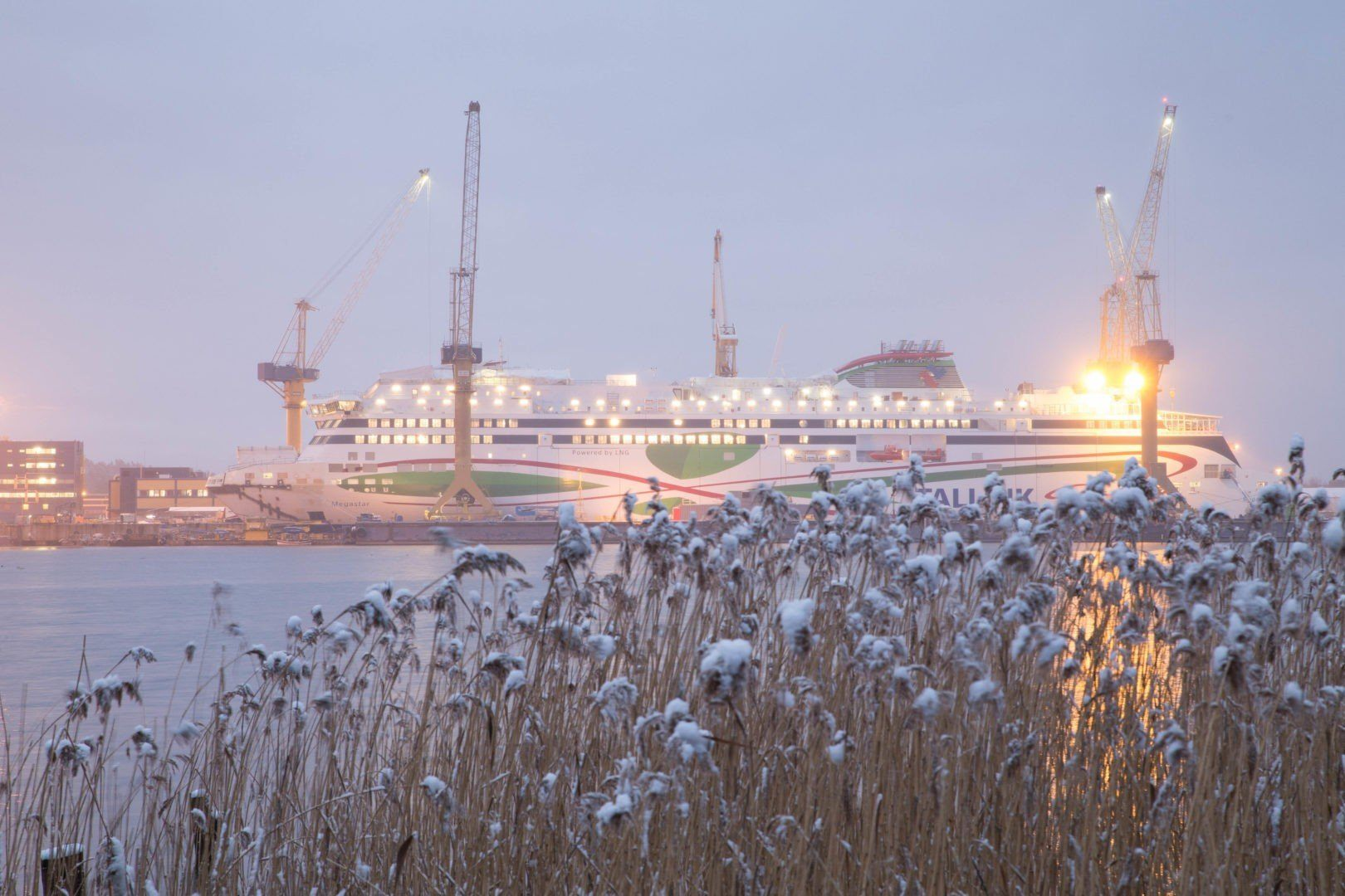 Megastar Tallink