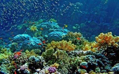 Египет Фото -4